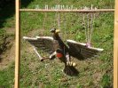 2010-09-05-kinderschuetzenfest-002_2_20100907_1916141246